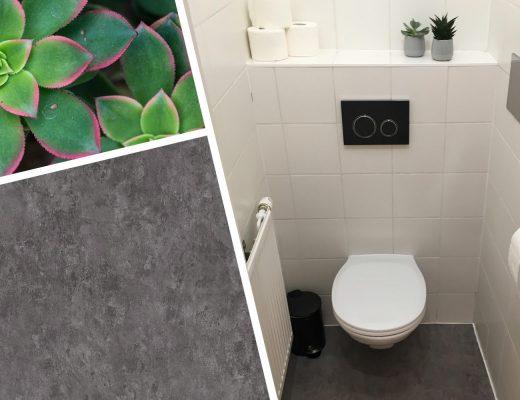 WC DIY mit grauem Vinylboden und Sukkulenten